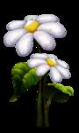 «Charming_Dwarf_Forest» 0_9101c_97a520fd_S