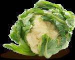 «kimla_Spring_Cooking»  0_9105d_d5cccb65_S