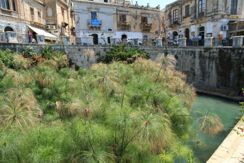 Сицилия, Сиракузы,Ортиджия – источникАретузы