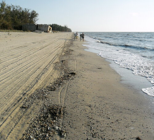 На песчаных берегах моря Азовского, сентябрь 2012