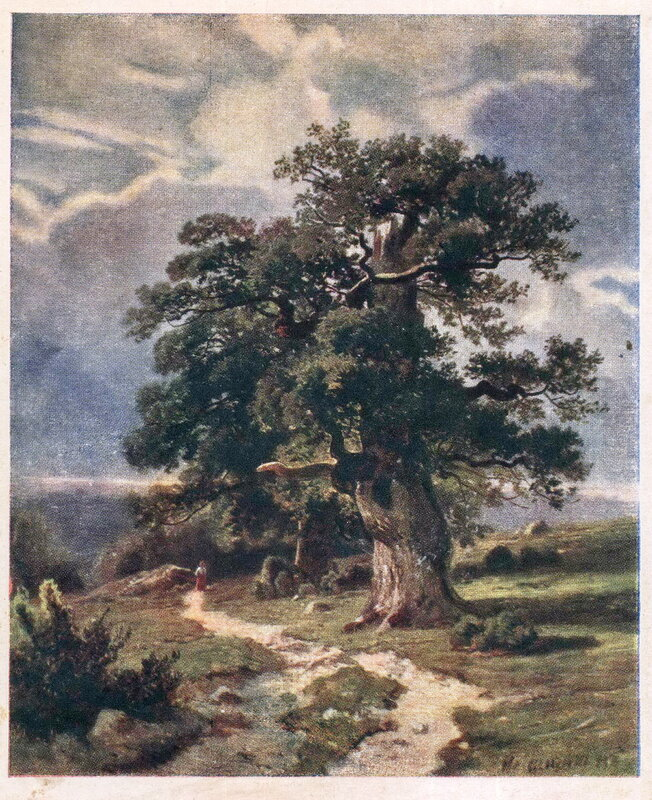 029. Шишкин 008. И.И. Шишкин. Деревья.