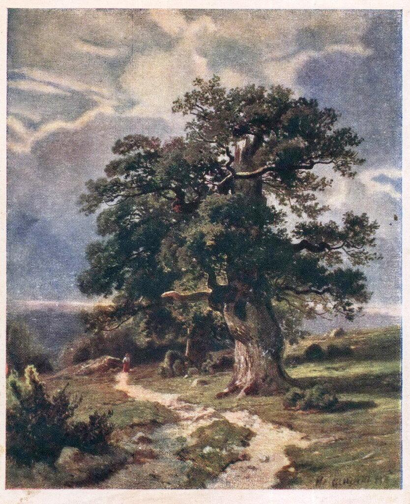 И.И. Шишкин. Деревья.