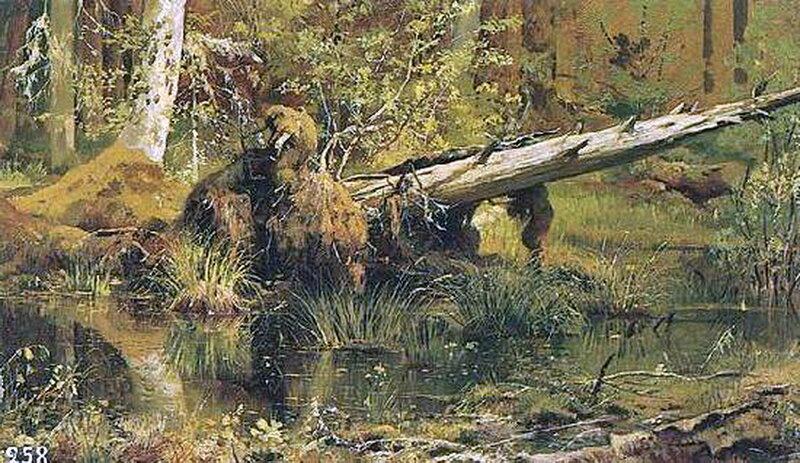 Лес (Шмецк близ Нарвы). И.И. Шишкин.jpg