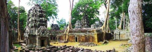 Камбоджа, храм Та Пром, Ta Prohm