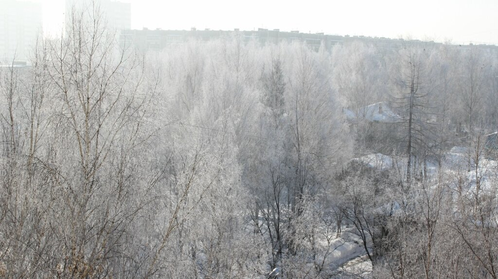 утренний снег