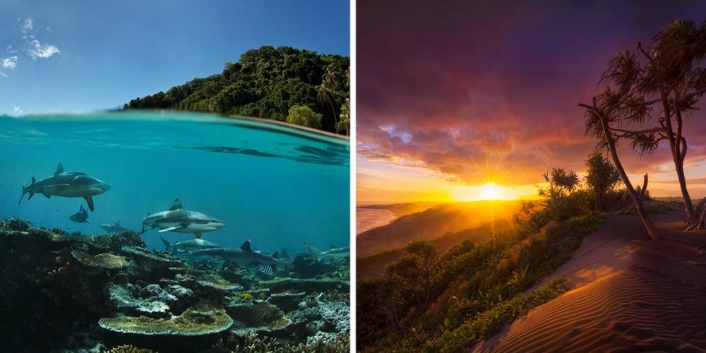 Фиджи поражают воображение голубыми лагунами, шикарными пляжами изелеными холмами. Примерно на100