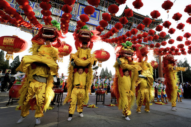 Performers participate in a lion dance at Ditan Park to mark the first day of Chinese Lunar New Year