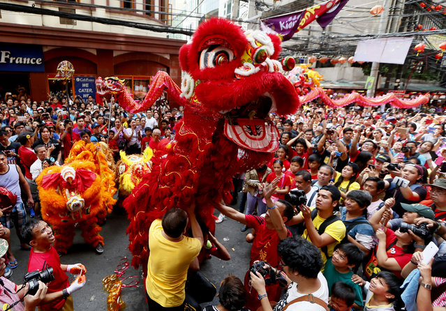 Dragon and lion dancers perform before a huge crowd in celebration of the Chinese Lunar New Year Mon