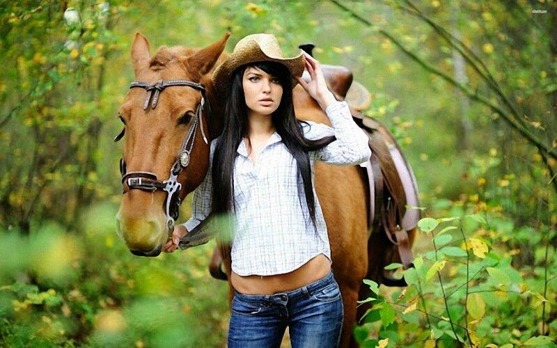 Правила общения с лошадью