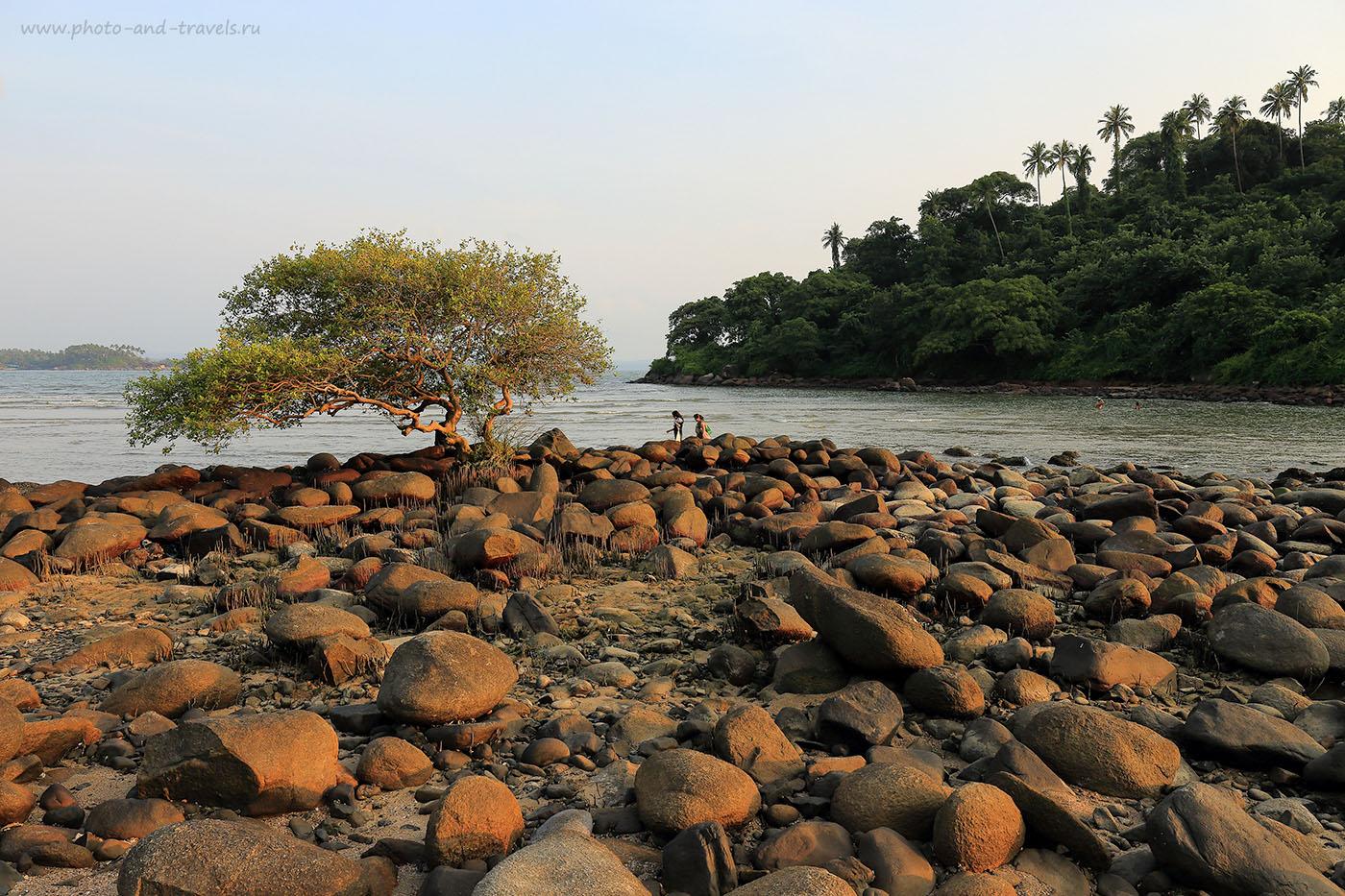 Фото 5. Вид на остров Green Island в Южном Гоа. Отдых в Индии дикарем. Отчеты туристов (24-70, 1/100, -1eV, f9, 24mm, ISO 100)