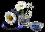цветы (131).png