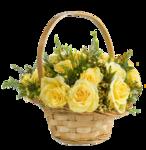 цветы (133).png