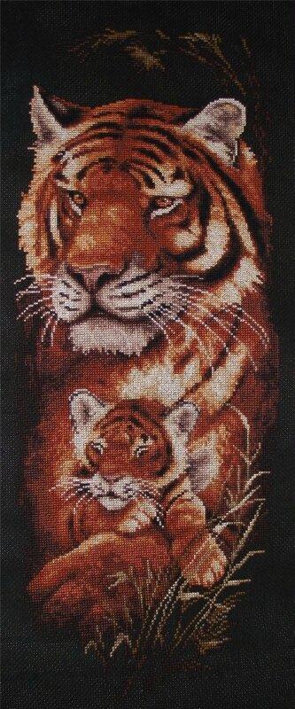Схема вышивки Тигры от Золотое руно - скачать бесплатно Вышивай крестиком.