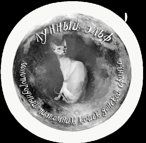 http://img-fotki.yandex.ru/get/6413/123267211.11/0_aeeb5_65b62c96_L.jpg