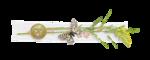Palvinka_FlowerAdventure_cluster6.png