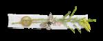 Palvinka_FlowerAdventure_cluster6sh.png