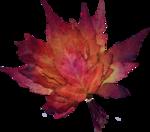 emka_AutumnTwilight_element15.png