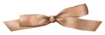 jeand_weddingdiary_bow3.png