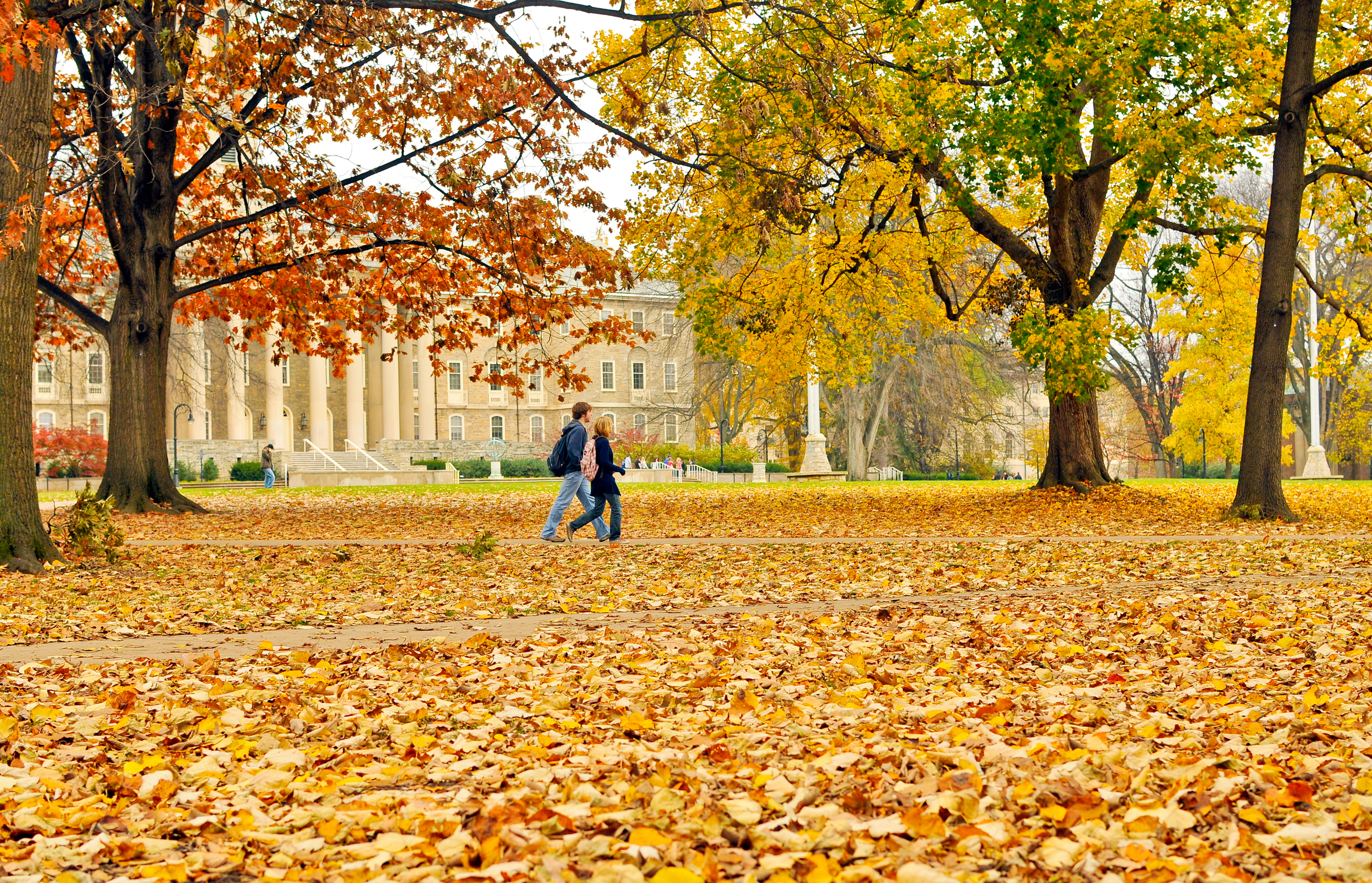 Penn State students walk through a leafy Old Main lawn. As cooler weather dips into Happy Valley, many trees on campus have begun to lose most of the foliage.