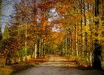 Осенняя Баварская сказка.