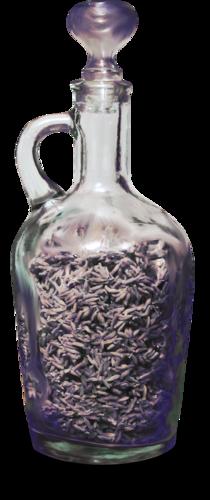 «Kimla_LavenderStory» 0_90211_a149e690_L