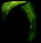 «Charming_Dwarf_Forest» 0_91016_b0c9996e_S