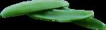 «kimla_Spring_Cooking»  0_91043_993af140_S