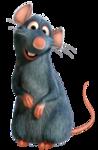 «SHT_Ratatouille» 0_9120d_319ba54c_S