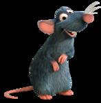 «SHT_Ratatouille» 0_9120e_eb09d36_S