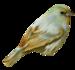 StarLightDesigns_UseYourLove_elements (52).png