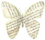 paper_butterfly.png