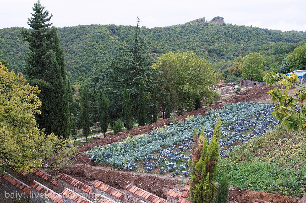 Монастырский огород в Бодбе
