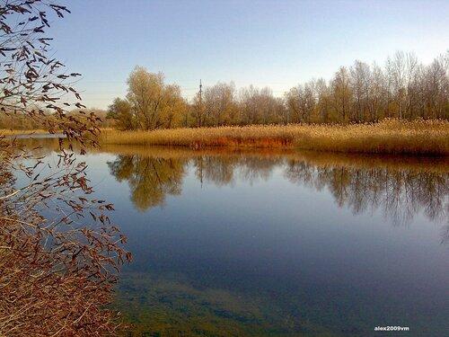 Тишина подружилась с осенью