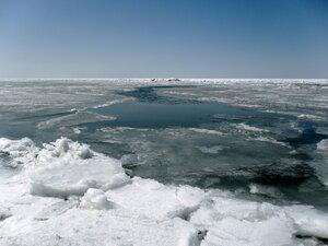 Морские мартовские льды, весна 2012
