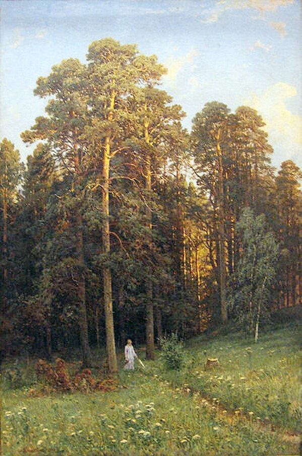 Иван Шишкин. На опушке соснового леса .1882.jpg