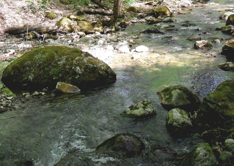 Вода бегущая средь камней ... SAM_7518 - 2.JPG