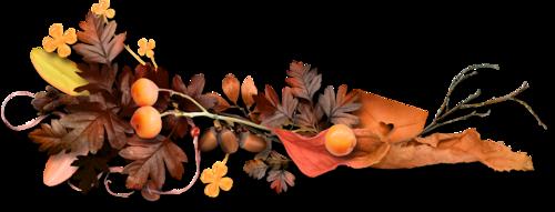 осень (30).png