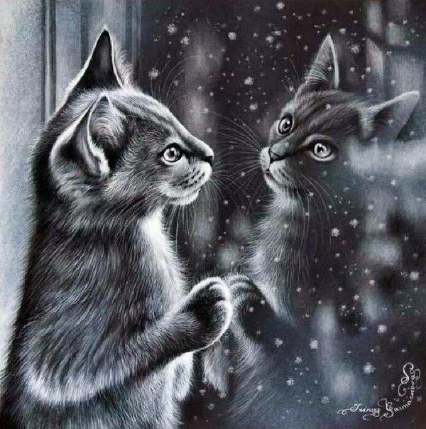 О чём мечтает кошка сидя у окошка? Ирина Гармашова