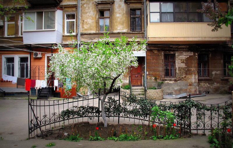 Одесса, май 2011