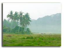 Малайзия. Лангкави. pistolseven - shutterstock