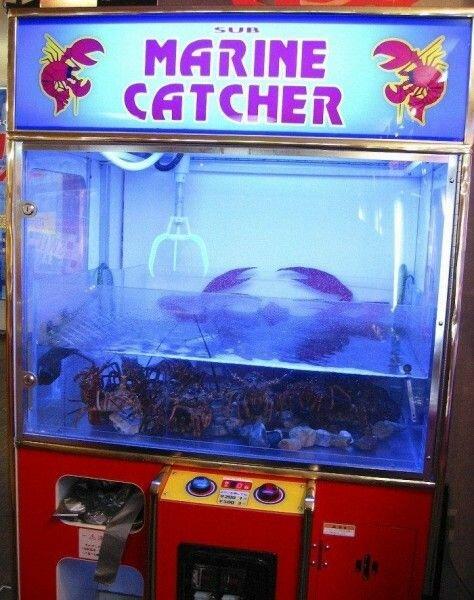 Японская рыбалка