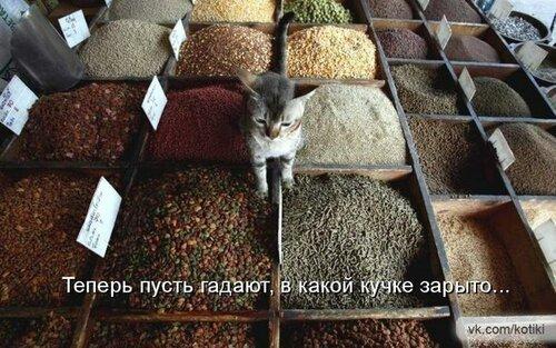 http://img-fotki.yandex.ru/get/6414/22466477.179/0_13d931_76800c8a_L.jpg