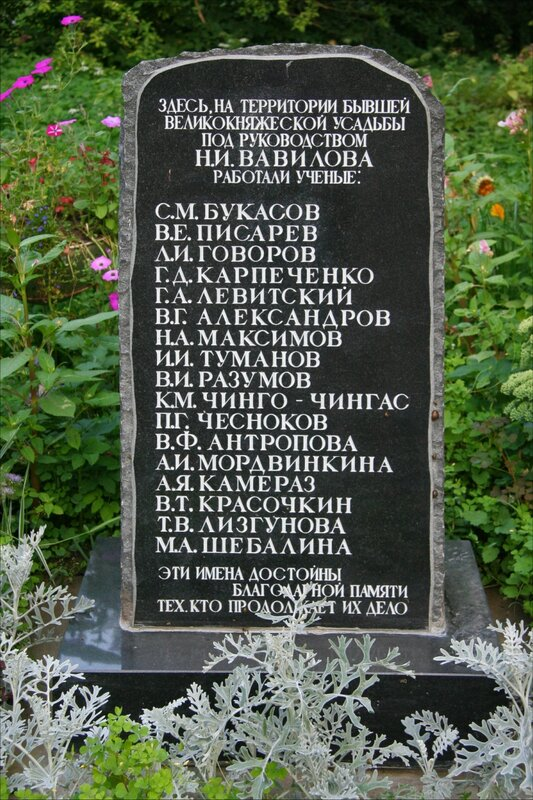 Дача великого князя Бориса Владимировича, мемориальная доска