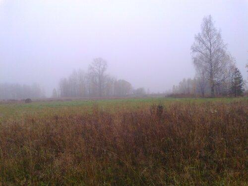 Стихи о природе Шабалинской земли,  Сергей Панарин