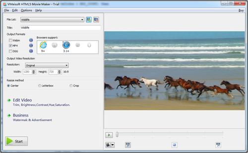 VMeisoft флэш в HTML5 конвертер