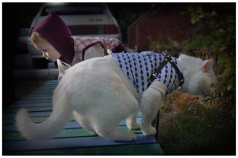Девочка и белые кошки