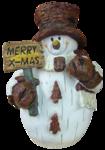 feli-acig-snowman.png
