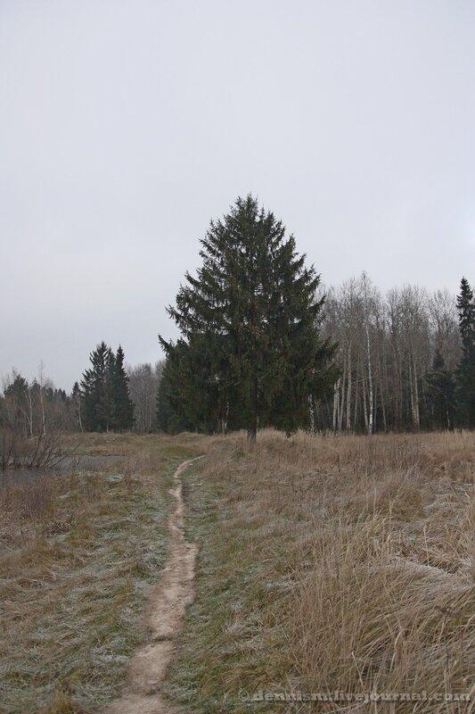 Тупик Фряновского шоссе