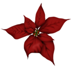 cuddlebeez_cb_flower6.png