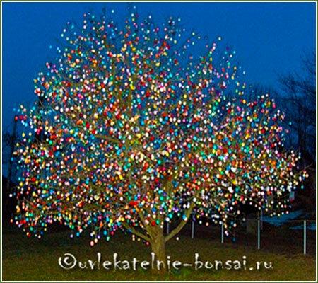 О знаменитом пасхальном дереве Крафтов. Символ Пасхи